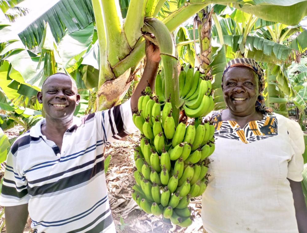 Bönderna George Natembeya Matete och Imelda Nabangala. Foto Habil Onyango.